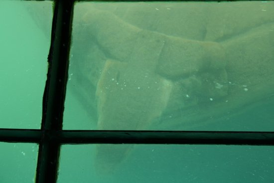 Glass Bottom Shipwreck Tours: Glass bottom boat