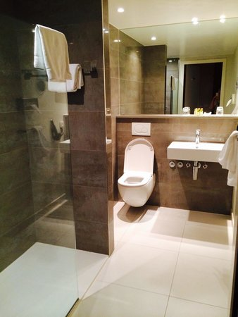 Sandton Hotel Brussels Centre: El baño