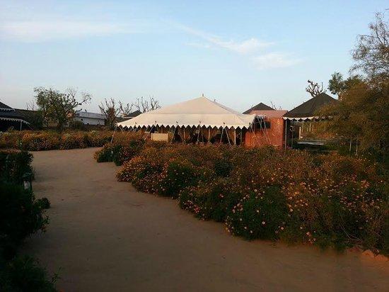 Orchard Hospitality Pvt Ltd: Tents