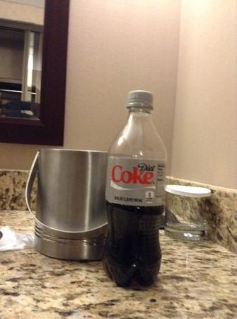 """DoubleTree by Hilton Hotel Portland : ice buckets should be functional, not """"cute"""""""