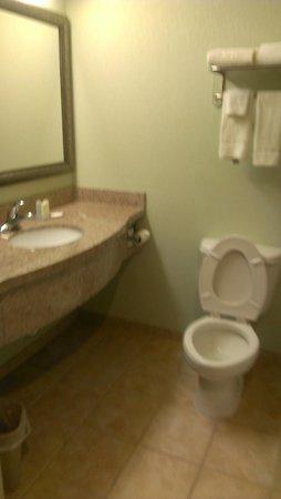 Comfort Inn and Suites: Bathroom