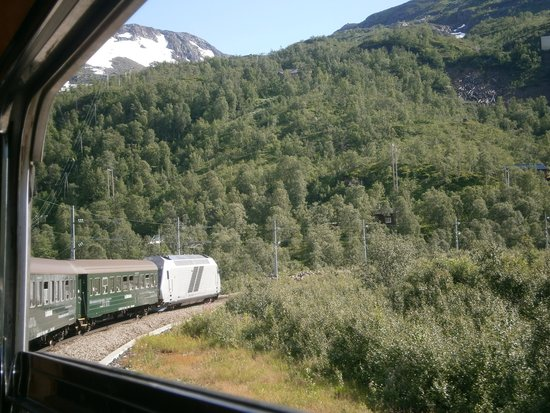 Roedne Fjord Cruise: The train from Flam to Myrdal