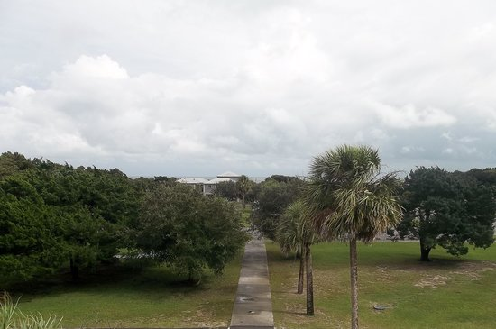 Huntington Beach State Park : A view from the top of the gift shop/store!