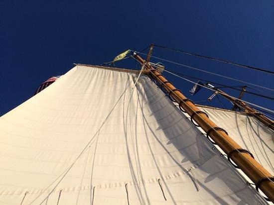Schooner Olad Windjammer Cruise: sails!