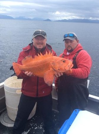 Alaska's Kodiak Island Resort: 16 lb. Yelloweye Rockfish.