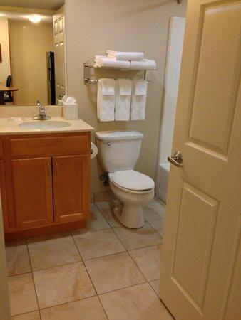 Best Western Plus Wausau-Rothschild Hotel : Bathroom