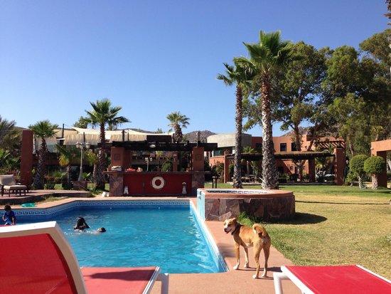 Hotel Boutique Valle de Guadalupe: Alberca