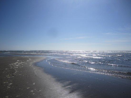 Shearwater Inn: Ocean and sand