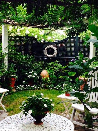 Parkside on Ellery: The Inn's Garden