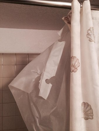 Maui Vista Resort: Torn shower curtain shows the maintenance level you can expect