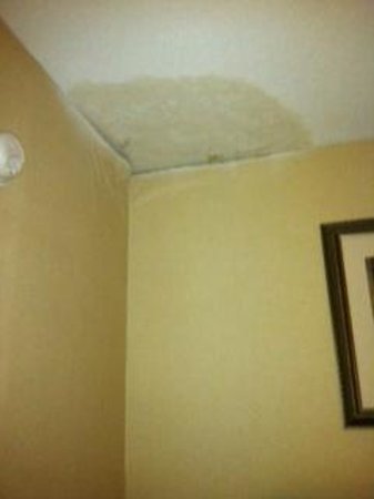 Rodeway Inn & Suites : leaking moldy ceiling