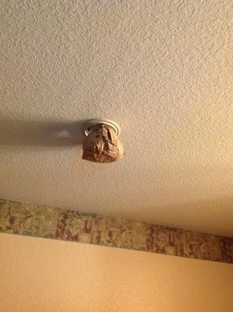 Toppenish Inn and Suites : my room's smoke alarm?