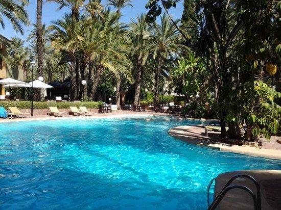 Hotel Huerto Del Cura: the pool