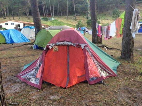 Camping Islas Cies: Camping site
