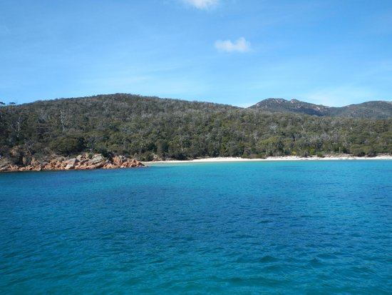 Wineglass Bay Cruises: Looking at Wineglass Bay from the water
