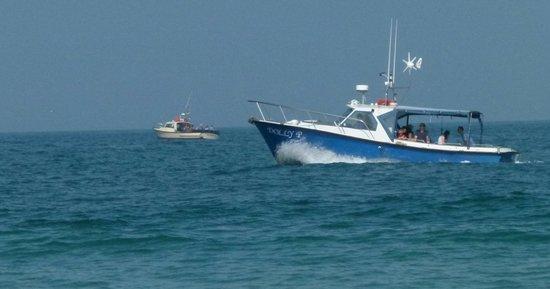 St Ives Boats: Dolly P