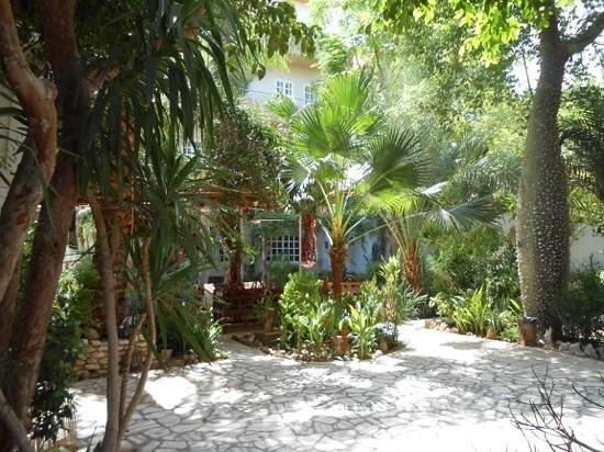 Amon Hotel Luxor: The beautiful tropical garden