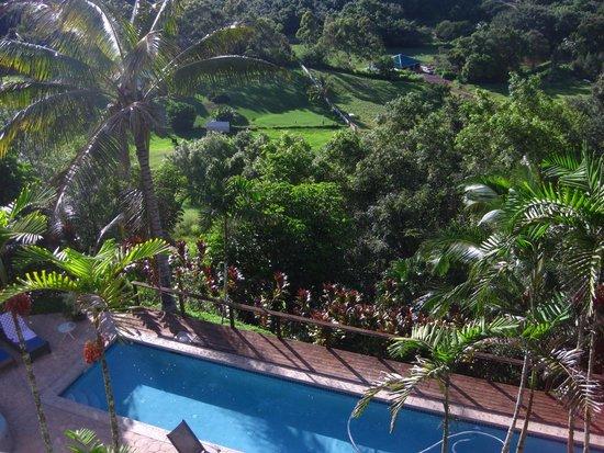 Marjorie's Kauai Inn: Amazing!