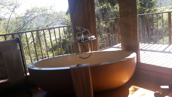 Botlierskop Private Game Reserve: What elke do you need, maybe a class of bubbly