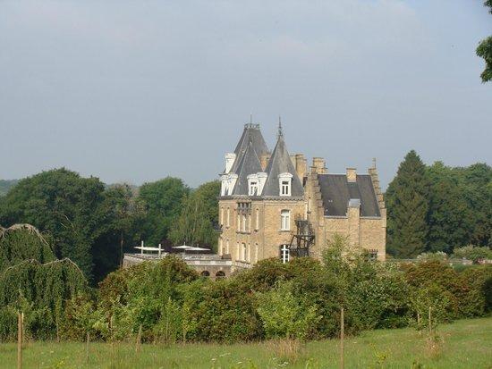 view of the castle picture of chateau de la poste assesse tripadvisor. Black Bedroom Furniture Sets. Home Design Ideas