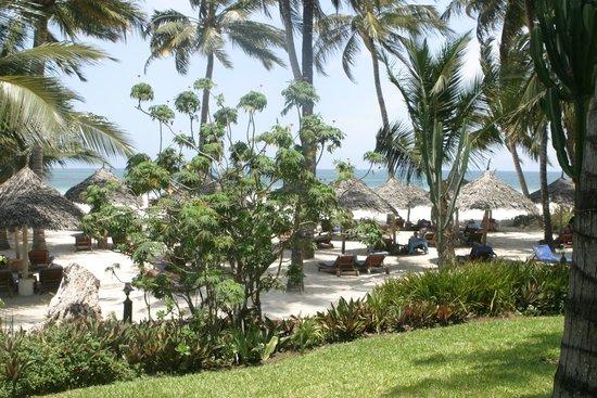 Pinewood Beach Resort & Spa garden view over the beach