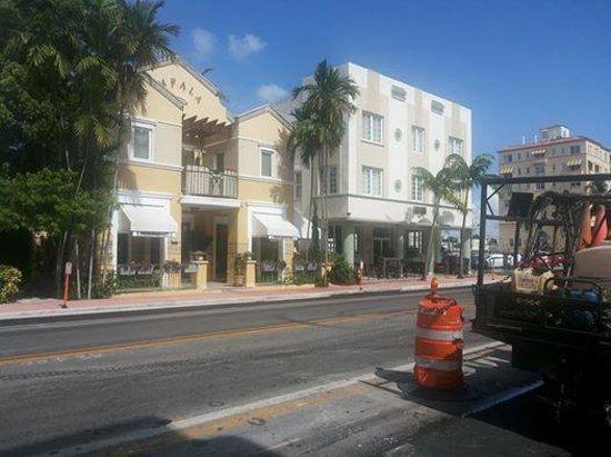 La Flora: Collins Avenue estava em reformas.