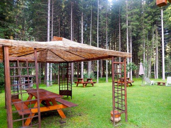 Hotel Garni Il Cirmolo: Prato attrezzato sul retro del Garnì