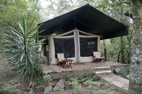 Mara Intrepids Luxury Tented Camp: Typical tented Room