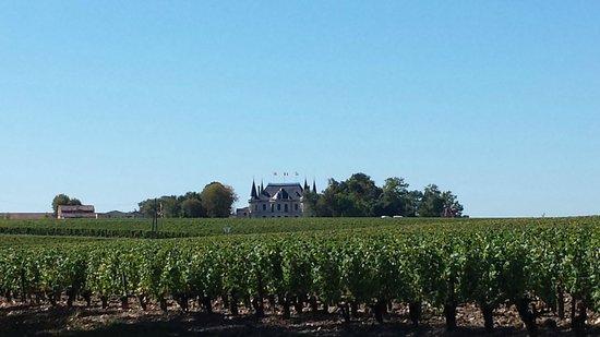 Ophorus Bordeaux Wine Day Tours : Chateau Palmer