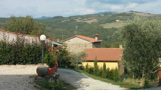 Agriturismo la Casina : viw from the place