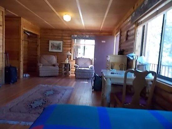 Tioga Pass Resort : cabin 9