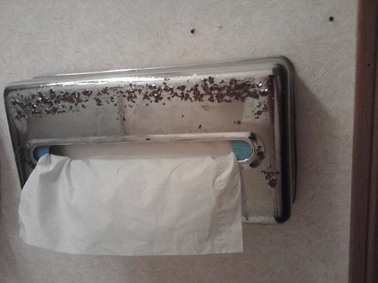 Rodeway Inn: Ugly chrome flaking on tissue holder