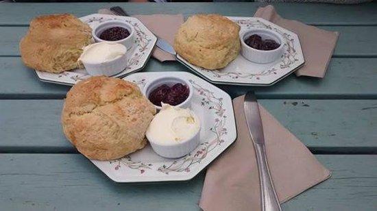 Deli Delights: Our yummy scones