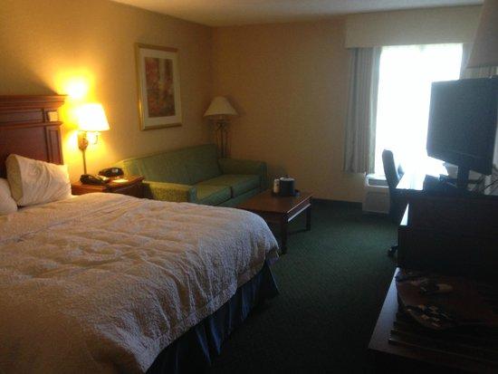 Hampton Inn Fairfax City: My very green musty room.