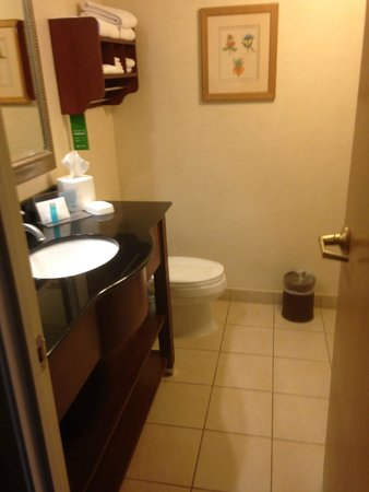 Hampton Inn Fairfax City: Bathroom.  Clean and well appointed.