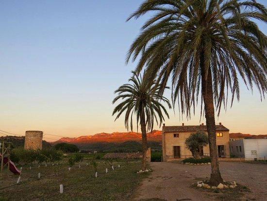 Mas Taniet L'Hotelet Rural : Vistas desde la zona de juegos