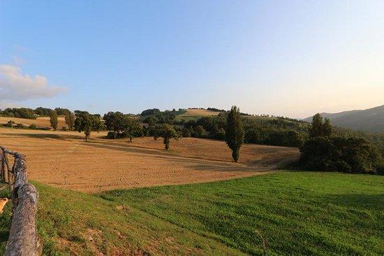 Agriturismo La Cima: Panorama
