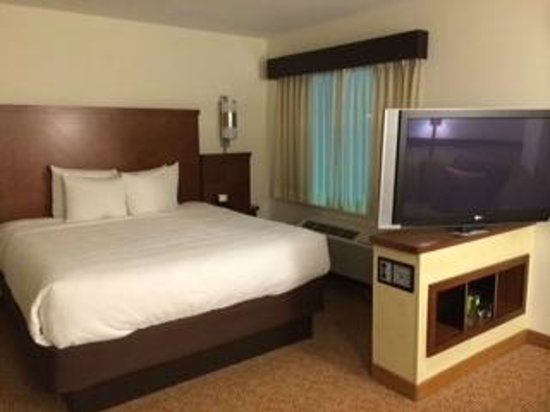 Hyatt Place South Bend/Mishawaka: Comfy bed- and TV swivels- it's HUGE!!!