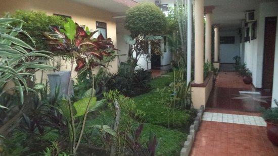 Hotel Kartika Kusuma: banyak tanaman kelihatan asri sesuai dgn kota malang