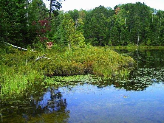 Side Lake, MN: Lakeside