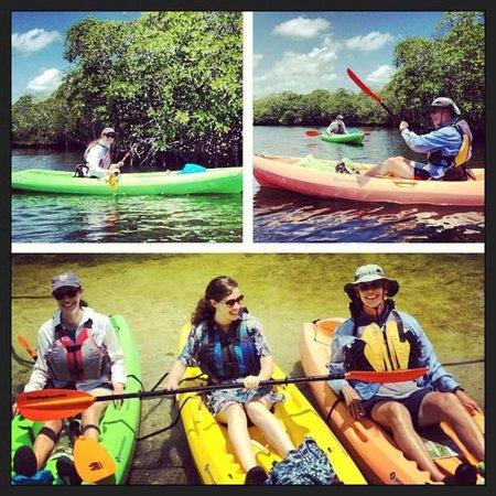 Shurr Adventures Everglades: Incredible time kayaking, thank you Shurr!