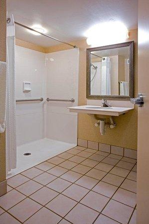 Holiday Inn Express Elmira Horseheads : Wheelchair Accessible Shower