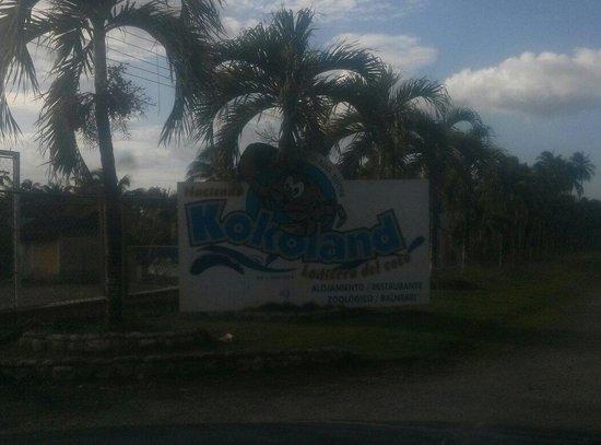 La Tierra del Coco Kokoland: Entrada a kokoland