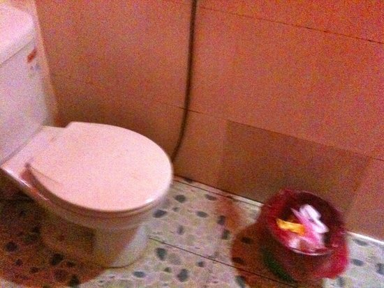 Sawasdee Angkor Inn : WC dal coperchio lurido
