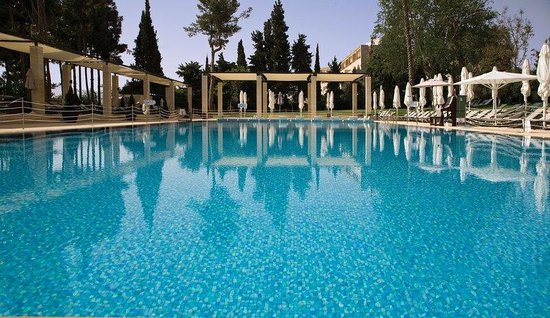 The King David : Swimming pool surrounded by landscaped Gardens