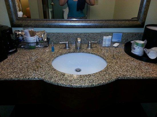 Hampton by Hilton Boca Raton: Granite sink area