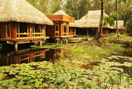 Bora Bora Pearl Beach Resort & Spa : Manea Spa Bora Environment