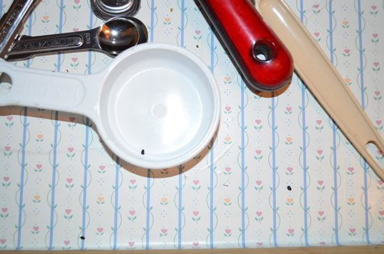 Skagit River Resort / Clark's Cabins : mouse poop in kitchen drawers