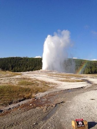 Old Faithful Snow Lodge and Cabins: Guess