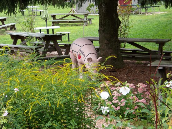 Adams County Winery: Around the winery